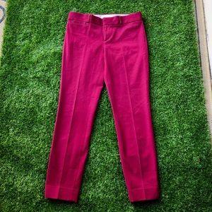 **NWOT Banana Republic Sloan dress Pants size 2!
